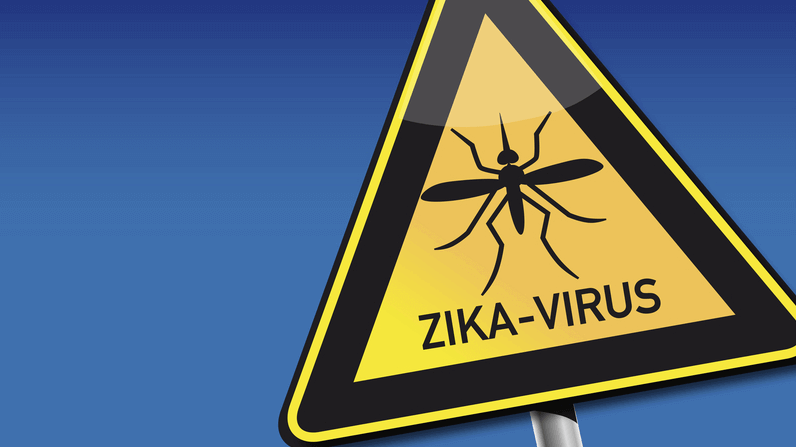 zika virus rash