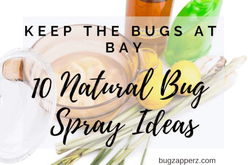 Keep Bugs at Bay the Natural Way: 10 Natural Bug Spray Ideas