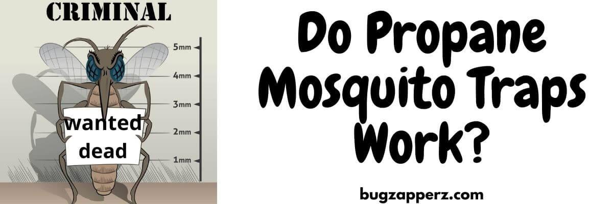 propane mosquito traps